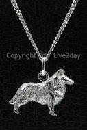 Honden zilver - groot - C  (27)