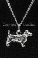 Honden zilver - groot - J  (11)