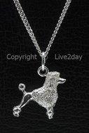 Honden zilver - groot - K  (14)