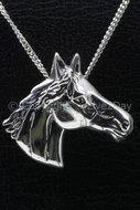 Paardenhoofd  (11)