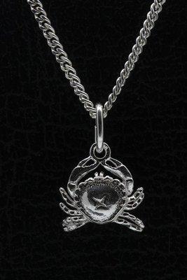 Zilveren sterrenbeeld Kreeft hanger - klein
